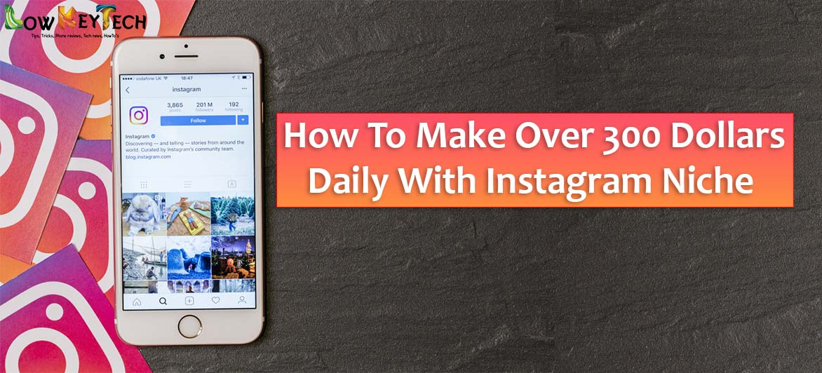 How To Make Over 300 Dollars Daily With Instagram Niche