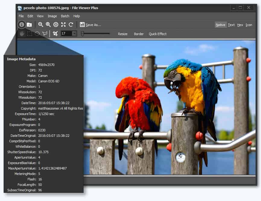 File Viewer Plus 3
